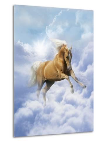 Dream Horses 069-Bob Langrish-Metal Print