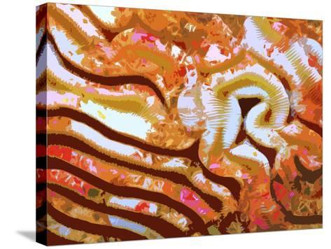 Rug-carpet XLIX-Fernando Palma-Stretched Canvas Print