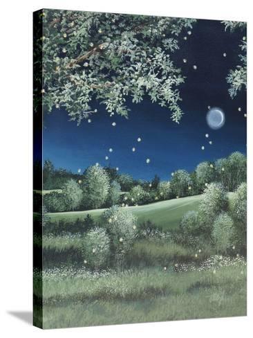 Fireflies Meadow-Debbi Wetzel-Stretched Canvas Print