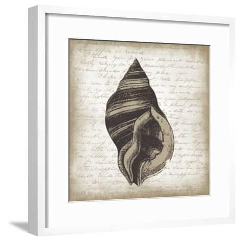 Shell II-Erin Clark-Framed Art Print