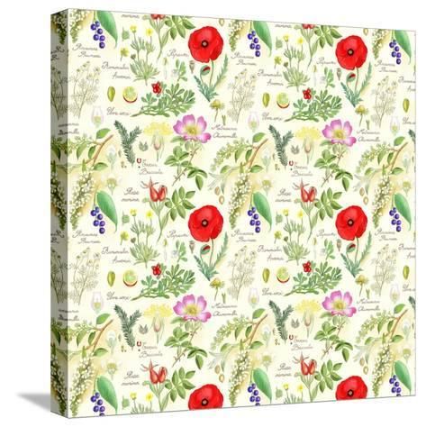 Bothanical Sketches-Gaia Marfurt-Stretched Canvas Print