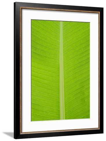 Leaf Texture I-Cora Niele-Framed Art Print