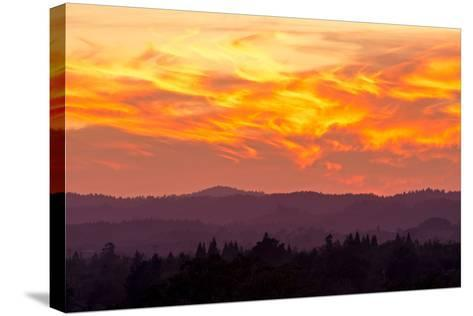 Blazing Sunset-Lance Kuehne-Stretched Canvas Print