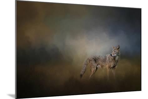 Coyote at Shiloh-Jai Johnson-Mounted Giclee Print