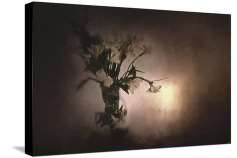 Fresh Bouquet-Jai Johnson-Stretched Canvas Print