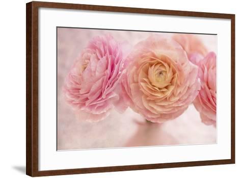 Pink Persian Buttercup Bouquet-Cora Niele-Framed Art Print