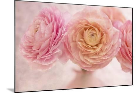 Pink Persian Buttercup Bouquet-Cora Niele-Mounted Photographic Print