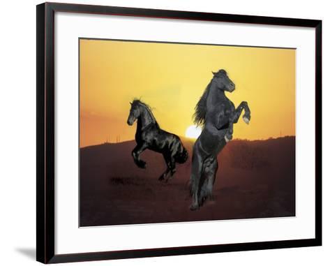 Dream Horses 024-Bob Langrish-Framed Art Print