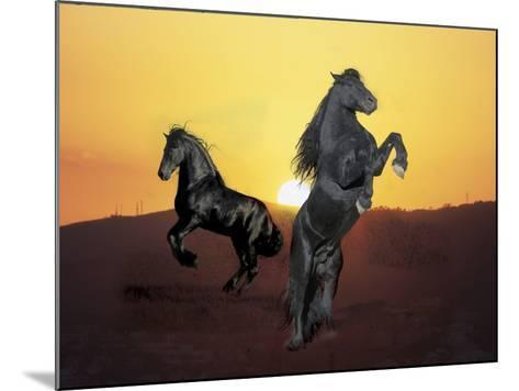 Dream Horses 024-Bob Langrish-Mounted Photographic Print