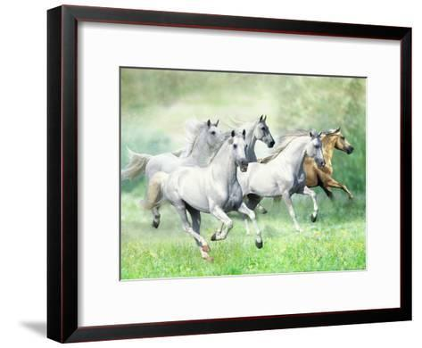 Dream Horses 028-Bob Langrish-Framed Art Print