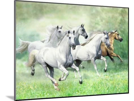 Dream Horses 028-Bob Langrish-Mounted Photographic Print
