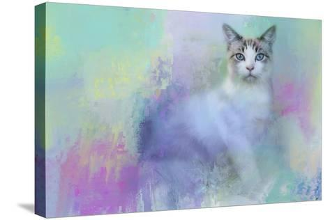Dreaming of Spring-Jai Johnson-Stretched Canvas Print