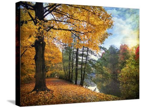 Golden Carpet-Jessica Jenney-Stretched Canvas Print