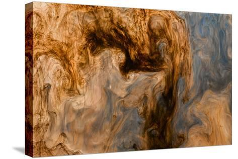 Ephemeral Beauty-12-Moises Levy-Stretched Canvas Print