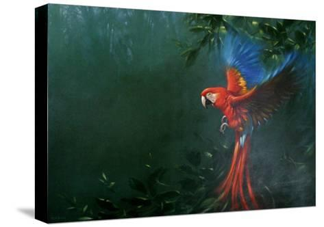 Scarlet Macaw 2-Michael Jackson-Stretched Canvas Print