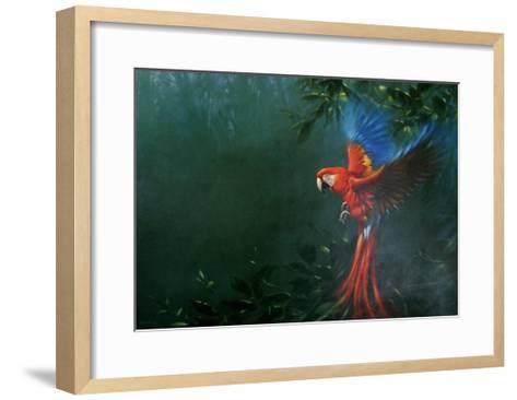 Scarlet Macaw 2-Michael Jackson-Framed Art Print