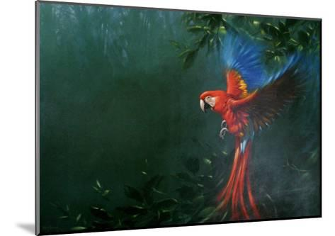 Scarlet Macaw 2-Michael Jackson-Mounted Giclee Print