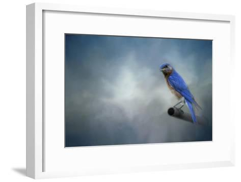 Bluebird on Patrol-Jai Johnson-Framed Art Print