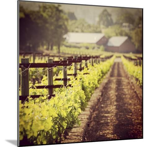 The New Vintage-Lance Kuehne-Mounted Photographic Print