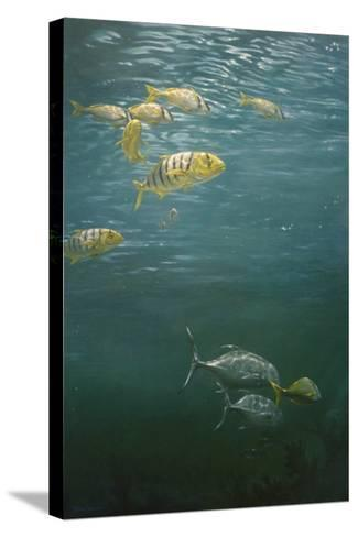 Fishes-Michael Jackson-Stretched Canvas Print