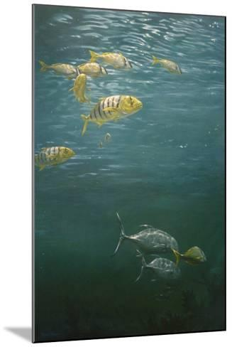 Fishes-Michael Jackson-Mounted Giclee Print