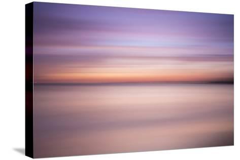 Primavera-Moises Levy-Stretched Canvas Print