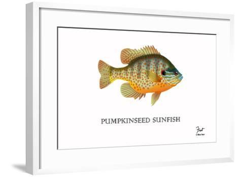 Pumpkinseed Sunfish-Mark Frost-Framed Art Print