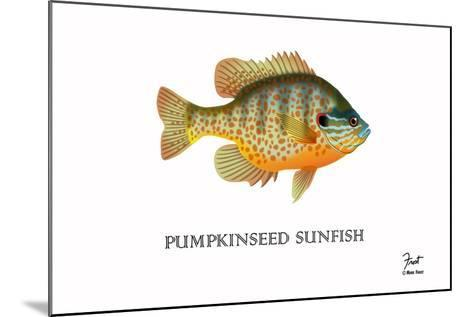 Pumpkinseed Sunfish-Mark Frost-Mounted Giclee Print