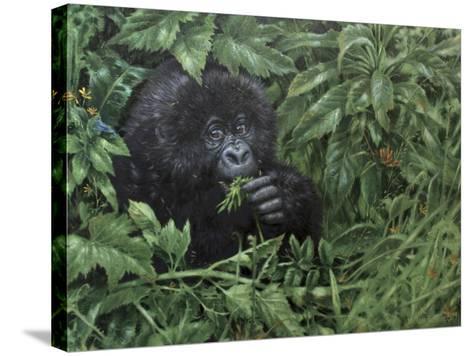 Gorilla 1-Michael Jackson-Stretched Canvas Print
