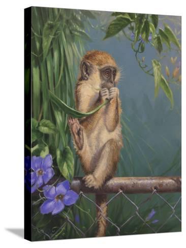 Monkey-Michael Jackson-Stretched Canvas Print