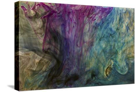 Ephemeral Beauty-3-Moises Levy-Stretched Canvas Print