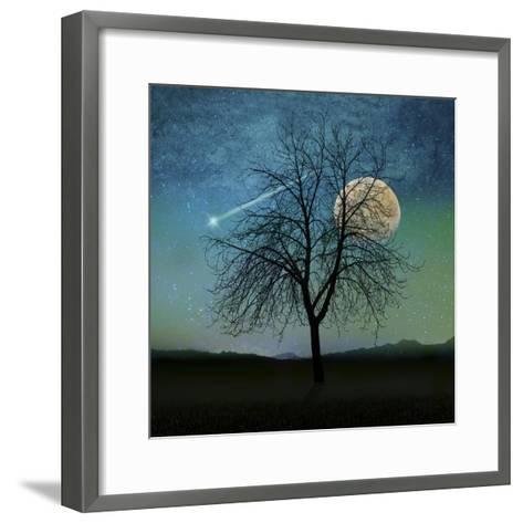 Solitude-Tina Lavoie-Framed Art Print