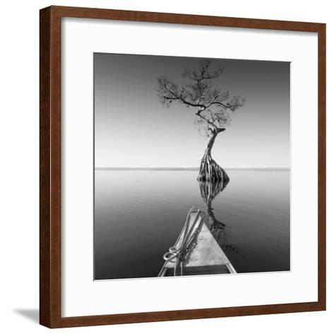 Alone with My Tree-Moises Levy-Framed Art Print