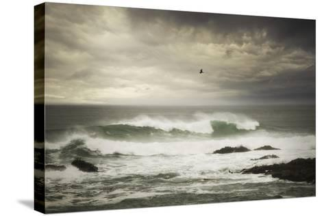 The Flight-Natalie Mikaels-Stretched Canvas Print