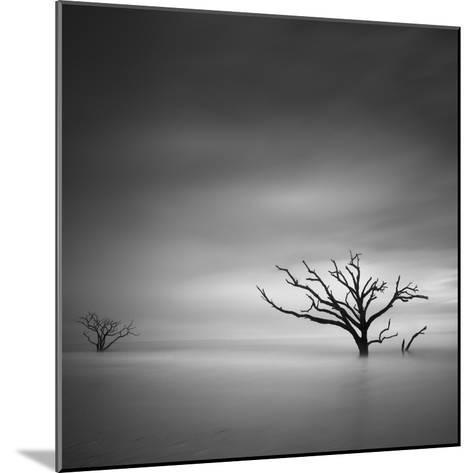 Alone-Moises Levy-Mounted Photographic Print