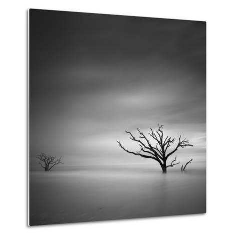 Alone-Moises Levy-Metal Print