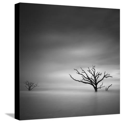 Alone-Moises Levy-Stretched Canvas Print