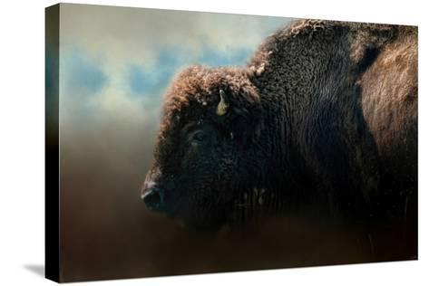 American Bison after the Storm-Jai Johnson-Stretched Canvas Print