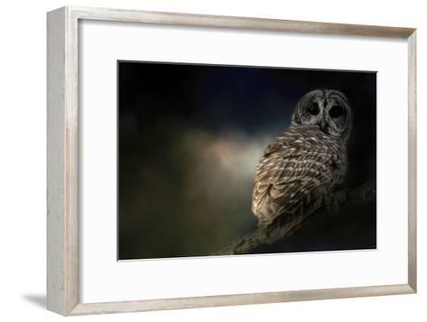 Barred Owl on a Winter Night-Jai Johnson-Framed Art Print