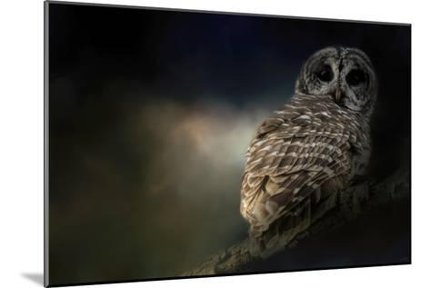 Barred Owl on a Winter Night-Jai Johnson-Mounted Giclee Print