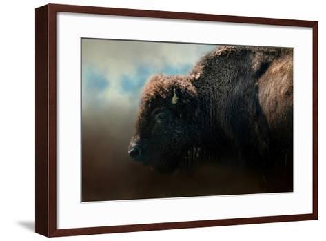 American Bison after the Storm-Jai Johnson-Framed Art Print