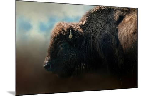 American Bison after the Storm-Jai Johnson-Mounted Giclee Print