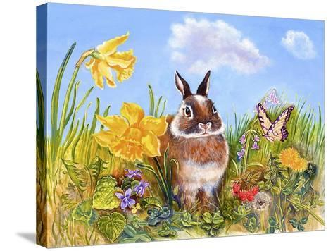 Bunny in Meadow-Judy Mastrangelo-Stretched Canvas Print