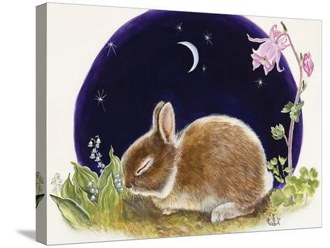 Sleeping Bunny-Judy Mastrangelo-Stretched Canvas Print