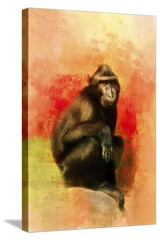 Colorful Expressions Black Monkey-Jai Johnson-Stretched Canvas Print