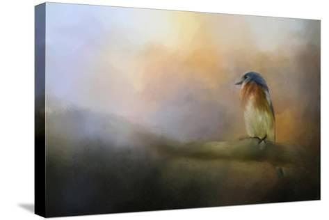 Bluebird in the Perfect Light-Jai Johnson-Stretched Canvas Print