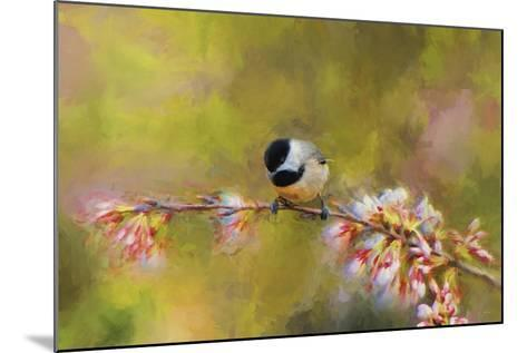 Impressionist Chickadee-Jai Johnson-Mounted Giclee Print