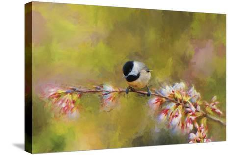 Impressionist Chickadee-Jai Johnson-Stretched Canvas Print