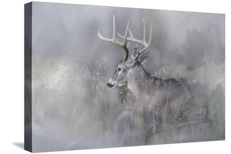 Meeting Winter Head On-Jai Johnson-Stretched Canvas Print