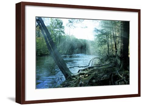 Nature-Mark Ashkenazi-Framed Art Print